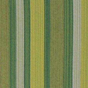 Vibrance Kiwi